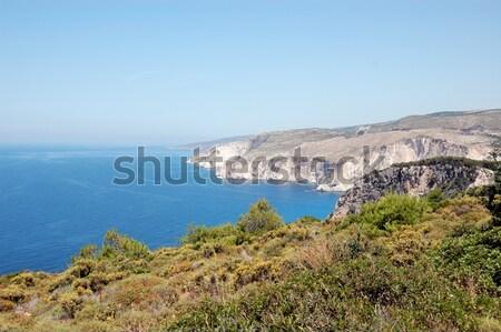 海岸線 海 ザキントス ギリシャ 水 自然 ストックフォト © sirylok