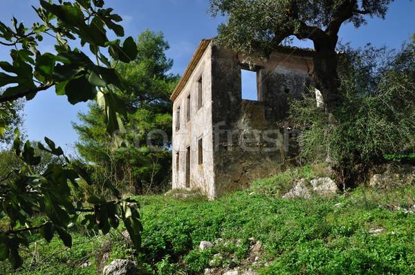 農村 家 遺跡 捨てられた ザキントス ギリシャ ストックフォト © sirylok