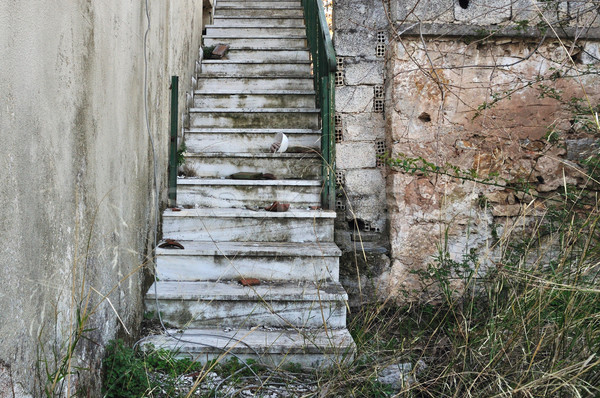 abandoned staircase and overgrown plants Stock photo © sirylok