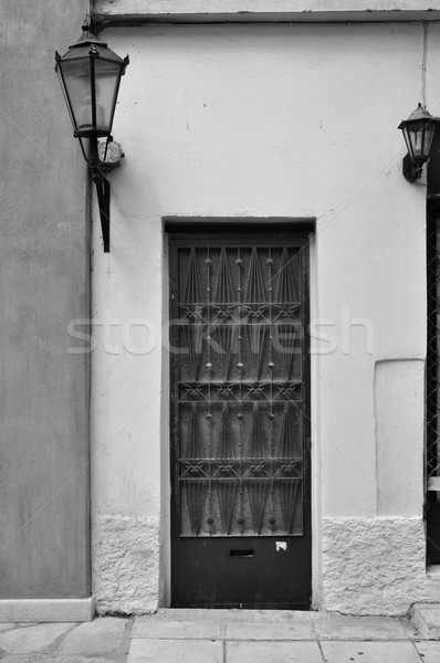 old door with metal pattern Stock photo © sirylok