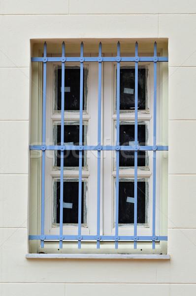 blue bars Stock photo © sirylok