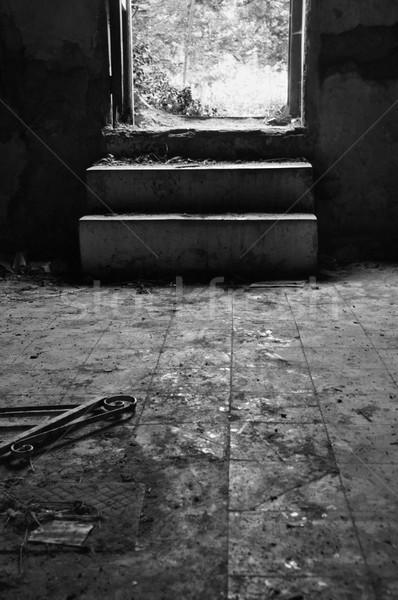 broken door dirty floor Stock photo © sirylok