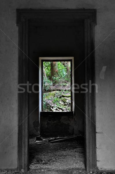 window view to nature scene Stock photo © sirylok