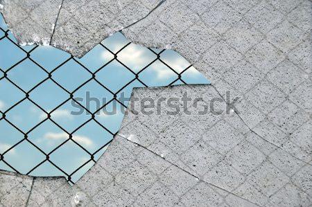 Cacos de vidro cerca cadeia link céu preto e branco Foto stock © sirylok