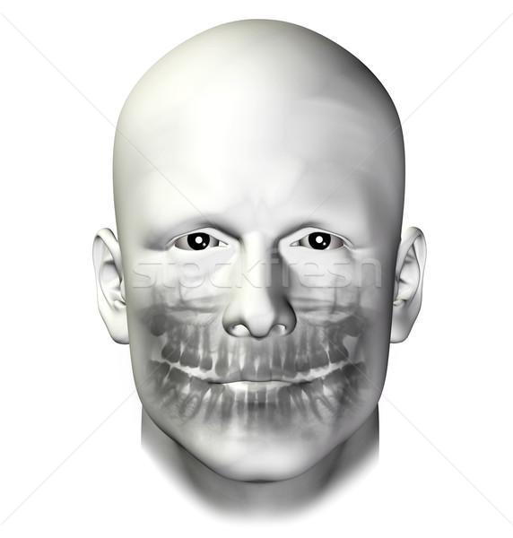 Stock photo: teeth dental scan adult male