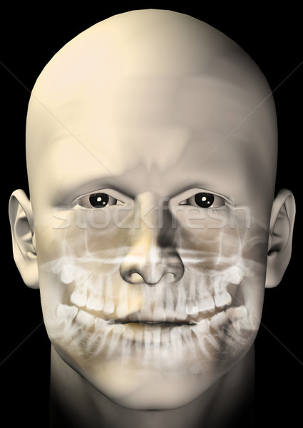 male figure dental scan Stock photo © sirylok