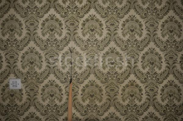 wallpaper pattern and light switch Stock photo © sirylok