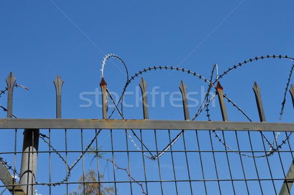 Brzytwa drutu kolczastego łańcucha link ogrodzenia zardzewiałe Zdjęcia stock © sirylok