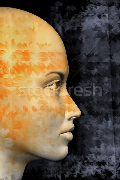 Floreale profilo femminile abstract pattern illustrazione 3d Foto d'archivio © sirylok