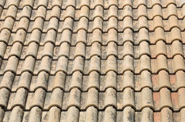roof tiles Stock photo © sirylok