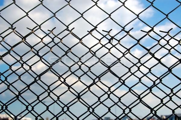wire mesh Stock photo © sirylok