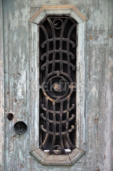 vintage door Stock photo © sirylok