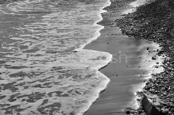 waves beach Stock photo © sirylok