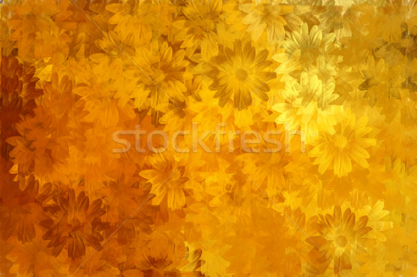 paint floral pattern Stock photo © sirylok