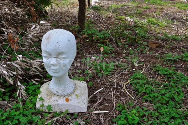 mannequin styrofoam head Stock photo © sirylok