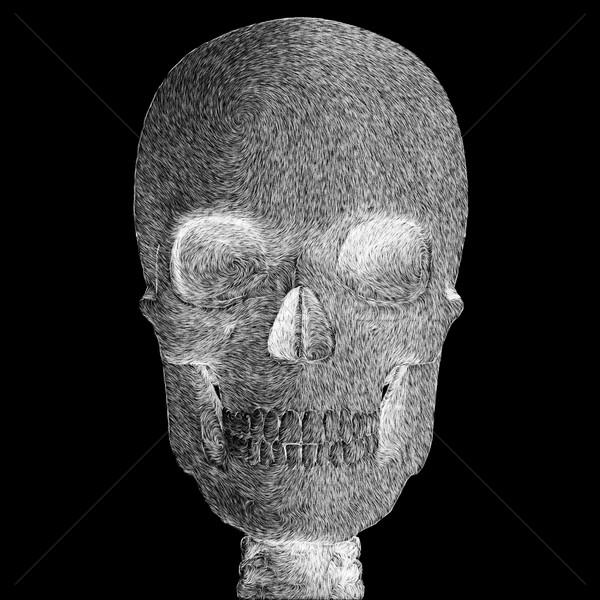 頭蓋骨 実例 抽象的な スケッチ デジタルイラストレーション ストックフォト © sirylok