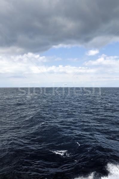 беспокойный морем Storm глубокий воды побережье Сток-фото © sirylok