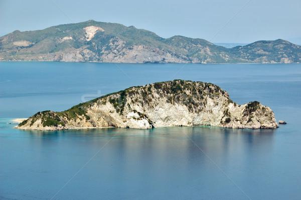 カメ 島 保護された 海 公園 卵 ストックフォト © sirylok