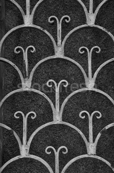 vintage floral motif Stock photo © sirylok