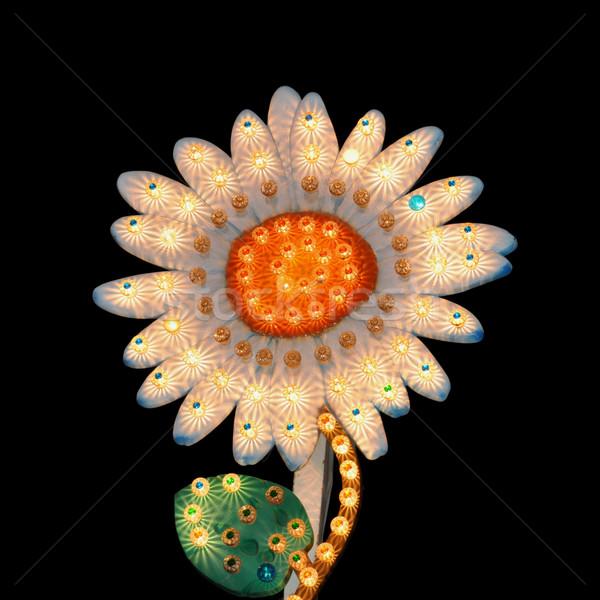 Daisy kwiat światła Widok noc Zdjęcia stock © sirylok