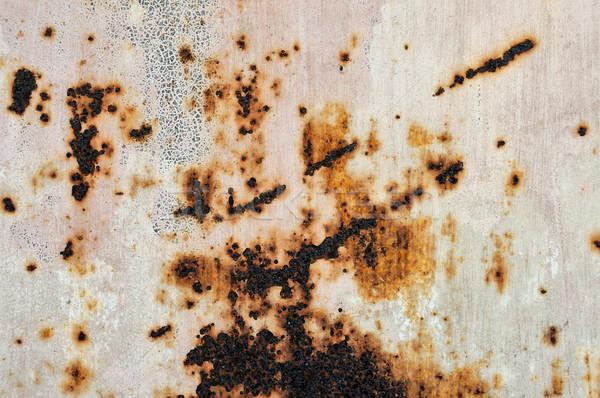 rusty metal texture Stock photo © sirylok