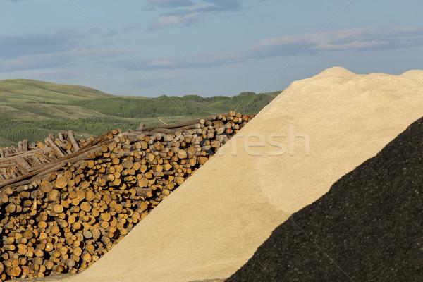 Fa sültkrumpli nagy fűrészmalom textúra Stock fotó © skylight