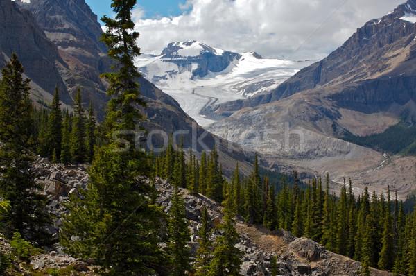 ледник гор парка Канада Сток-фото © skylight