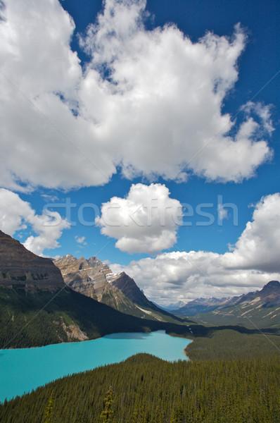 озеро парка Сток-фото © skylight