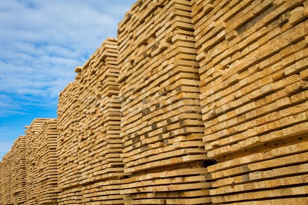 Legname segheria costruzione costruzione alberi Foto d'archivio © skylight