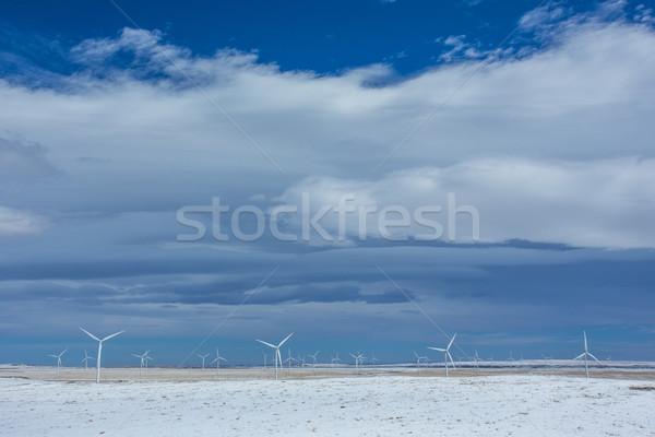 Wind turbines in winter wheat fields Stock photo © skylight