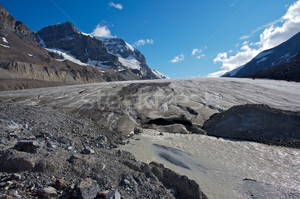 Athabasca Glacier with melt water 04 Stock photo © skylight