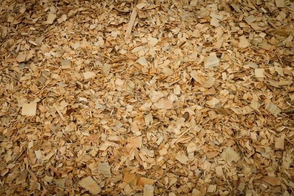 древесины чипов Сток-фото © skylight