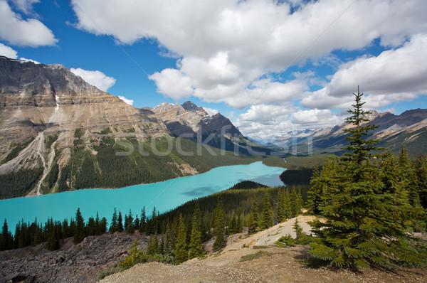 озеро парка гор Канада Сток-фото © skylight