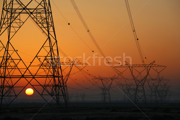 Electrical power lines Stock photo © skylight