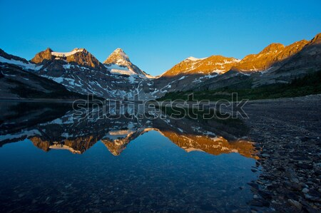 Mount Assiniboine with reflection Stock photo © skylight