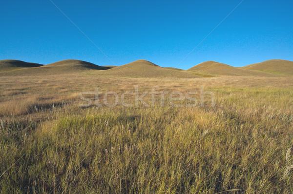 Kır tepeler doğal manzara kuzey Amerika Stok fotoğraf © skylight