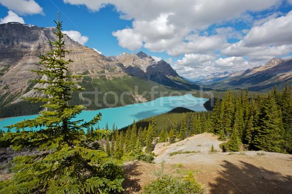 山 湖 公園 ストックフォト © skylight