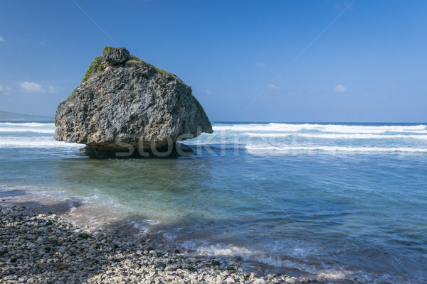 Bathsheba coral reef boulder Stock photo © smartin69
