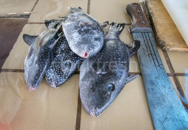 Balık pazar taze bekleme hazır Stok fotoğraf © smartin69