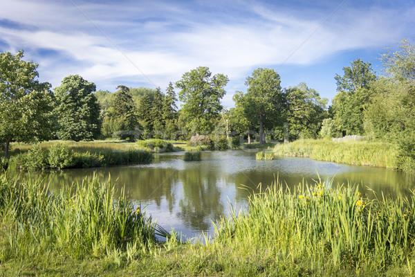 Kırsal göl manzaralı mavi bulutlu gökyüzü Stok fotoğraf © smartin69