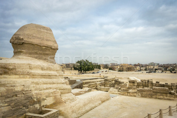 Stock photo: The Sphinx looking out towards Giza, Egypt