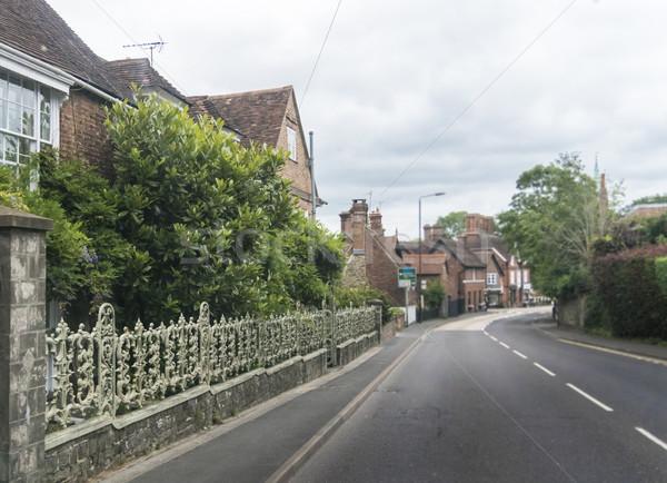 Ornate Wrought Iron Fence Stock photo © smartin69