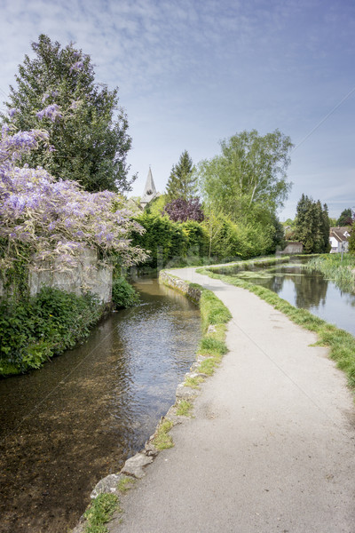 Suelto pueblo río ejecutando flores casa Foto stock © smartin69