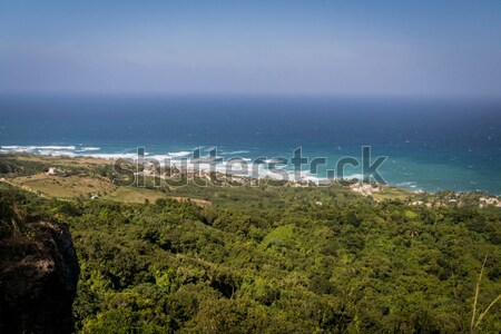 View of Bathseba, Barbados and surrounding countryside from Abov Stock photo © smartin69