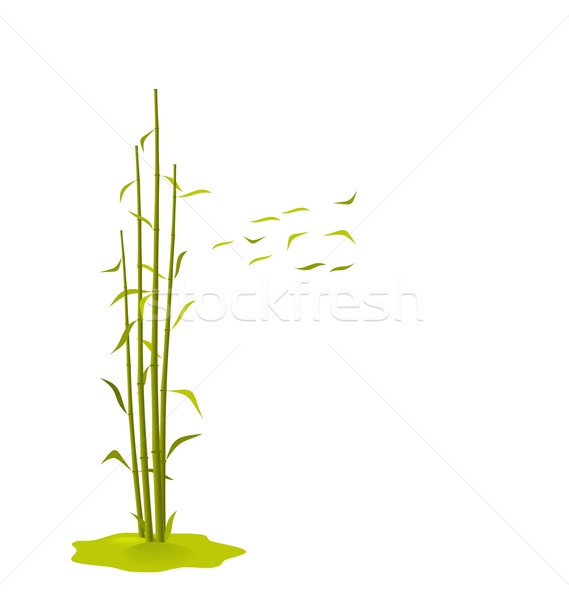 The illustration a wind breaks bamboo leaves Stock photo © smeagorl