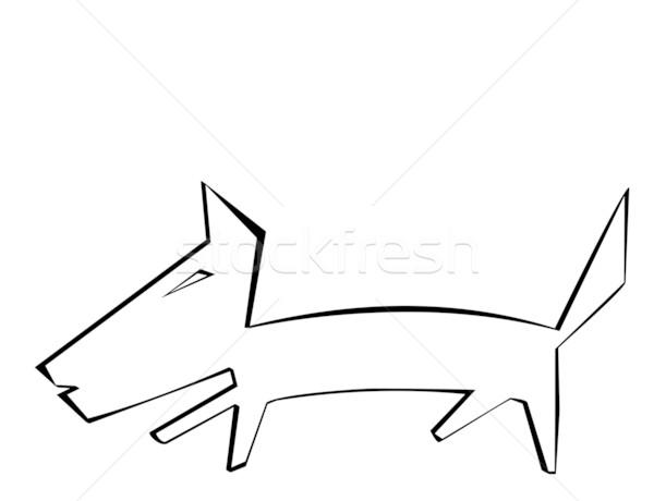 Dog on a white background Stock photo © smeagorl