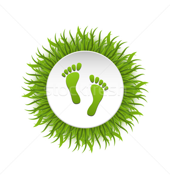 Eco Friendly Footprints on Green Grass Stock photo © smeagorl