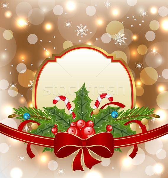 Christmas elegancki karty wakacje dekoracji ilustracja Zdjęcia stock © smeagorl