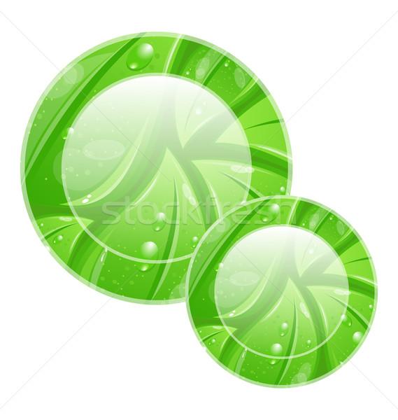 Ikon háló terv levelek textúra vektor Stock fotó © smeagorl