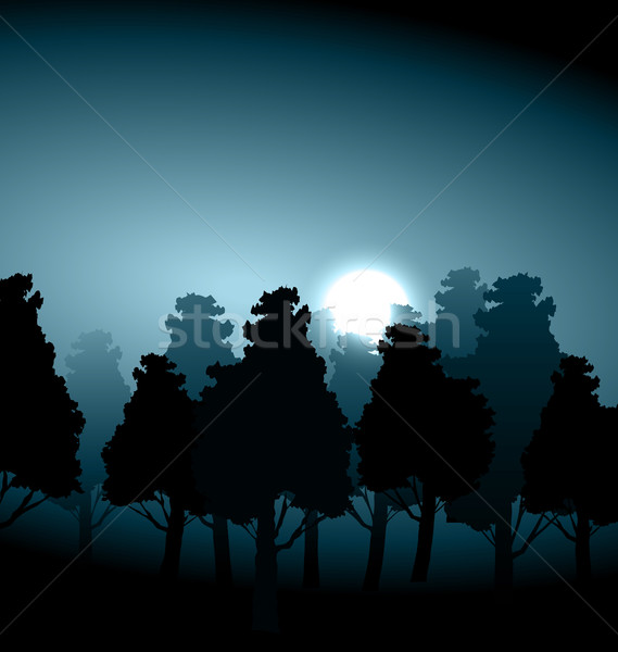 Valley middle forest in moonlight fog Stock photo © smeagorl